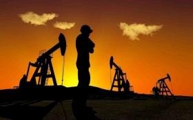 Силы нефтяных