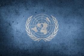 ООНслучайно допустила