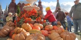 Россия увеличила экспорт
