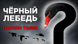Черный лебедь -